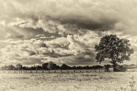 wolkenhemel