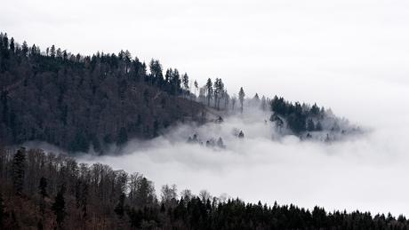 De kandel (zwarte woud)