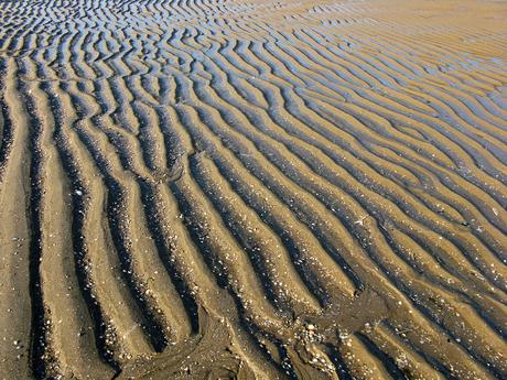 Sporen in het zand 3