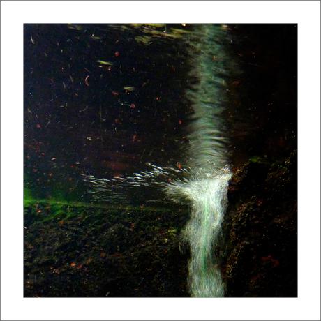 In het water 6