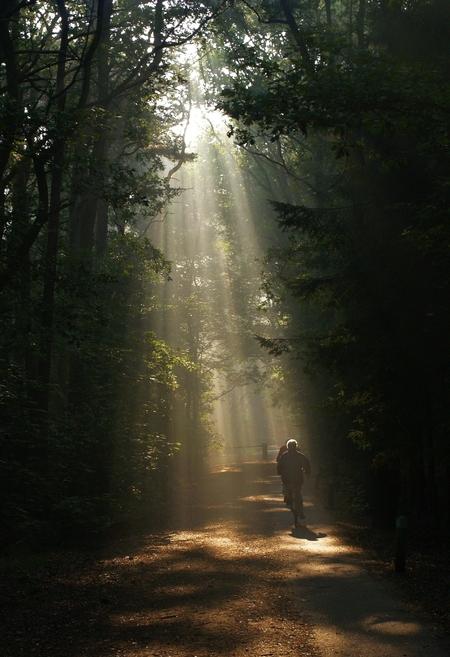Toen was er licht.... - Zondagochtend was het werkelijk fantastisch bij ons in de bossen (Oisterwijk). Er waren prachtige 'lichtbundels' te bewonderen. Bij deze vind ik het  - foto door juriheise op 21-09-2009 - deze foto bevat: mist, oisterwijk, zonlicht, fietsen