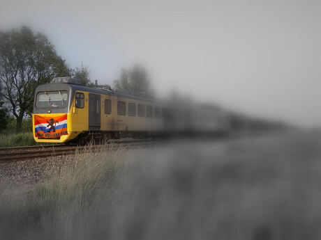 The Dutch Train...