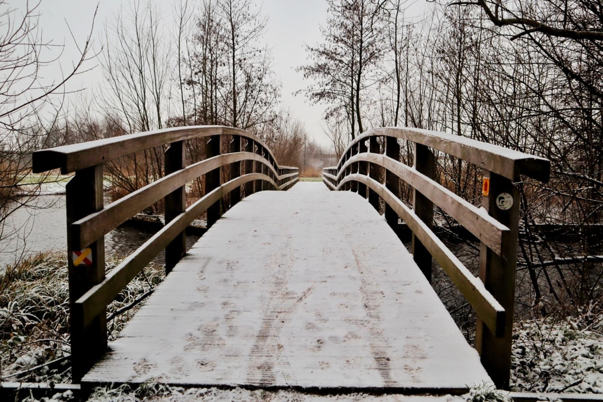 Brug in de sneeuw - - - foto door DeniseClemens op 02-03-2021 - deze foto bevat: boom, natuur, sneeuw, winter, landschap, bos, nederland - Deze foto mag gebruikt worden in een Zoom.nl publicatie