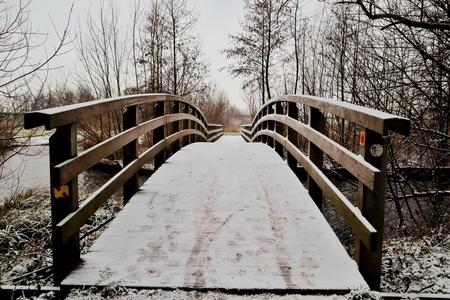 Brug in de sneeuw - - - foto door DeniseClemens op 02-03-2021 - deze foto bevat: boom, natuur, sneeuw, winter, landschap, bos, nederland