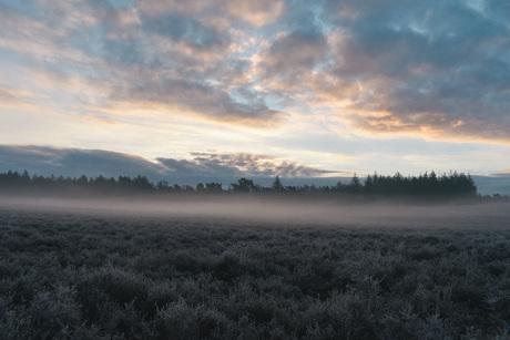 zonsopkomst op de hei
