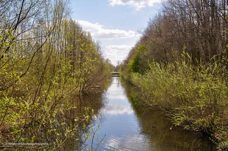 waterweg - Tijdens een wandeling over het Floriade terrein van 1992 kwam ik dit prachtige stukje tegen - foto door HeleendeSilva op 05-05-2021 - locatie: Balijbos, Nederland - deze foto bevat: water, lucht, wolken, bomen, groen, weerspiegeling, water, lucht, watervoorraden, fabriek, wolk, fluviatiele landvormen van beken, natuurlijk landschap, boom, waterloop, oeverstaten zone