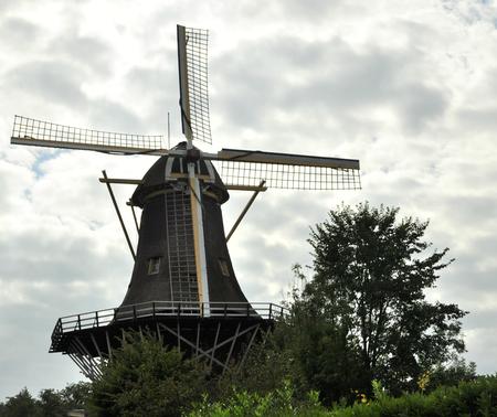 molen - molen te rotterdam - foto door mploeg-2701 op 09-04-2021 - locatie: Rotterdam, Nederland - deze foto bevat: wolk, windmolen, lucht, molen, fabriek, natuur, venster, boom, natuurlijk landschap, houtachtige plant