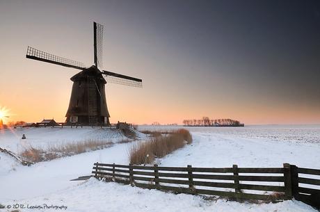Windmill Schermerhorn