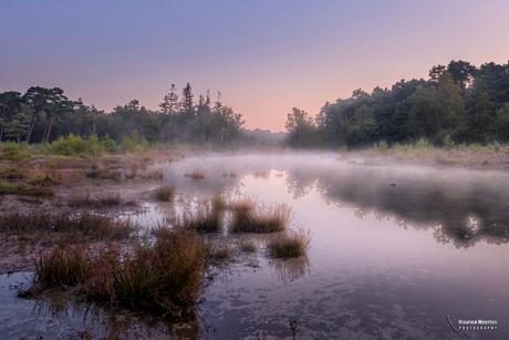 Mistige ochtend op de Brunssummerheide
