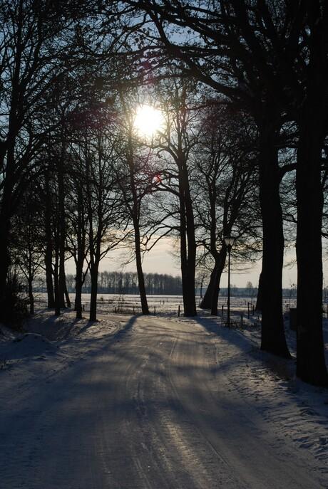 Winterzonnetje.