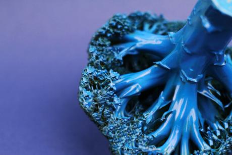 Blauwe broccoli