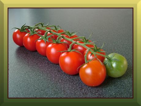 Regiment met groentje