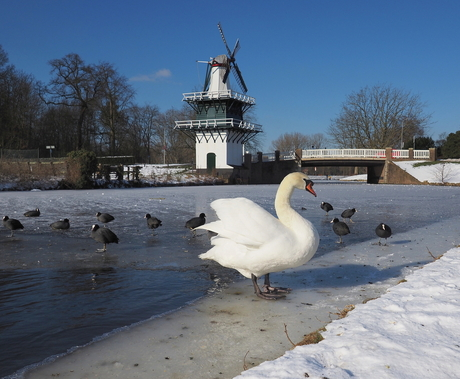 Winter....