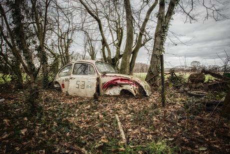 Another fallen Herbie