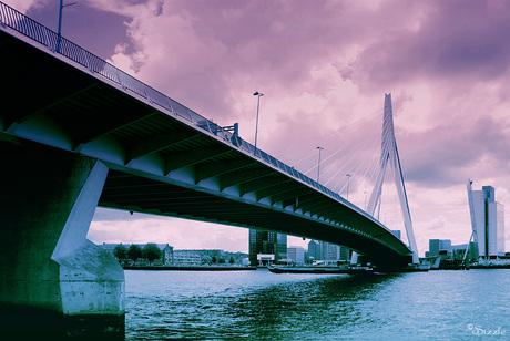 Rotterdam 6 serie 3