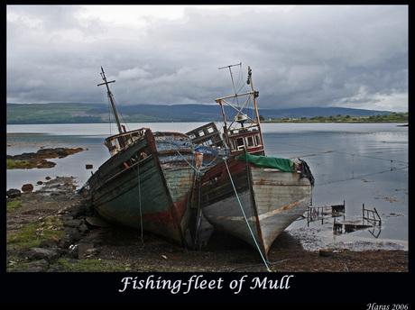 Fishing fleet of Mull