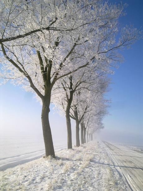 Stille winterochtend