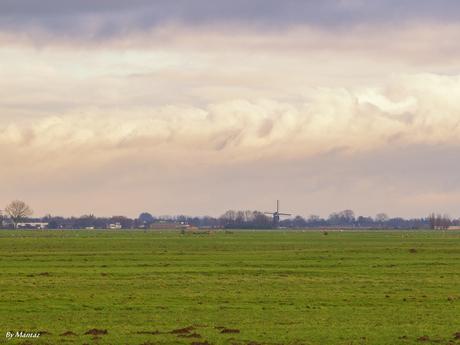 Hollandse polder en luchten
