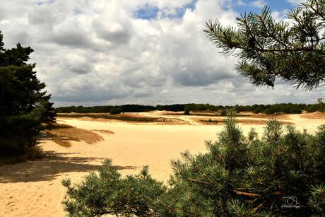 veel zand