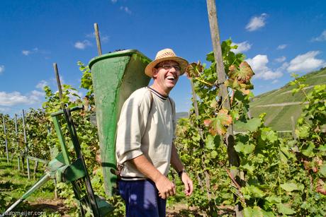 De vrolijke wijnboer