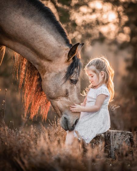 100% paardenmeisje - Gefotografeerd tijdens onze fotoreis in NL - foto door emerelle op 28-04-2021 - deze foto bevat: paard, meisje, paard, natuur, mensen in de natuur, flitsfotografie, gebaar, gelukkig, werkend dier, fawn, boom, gras
