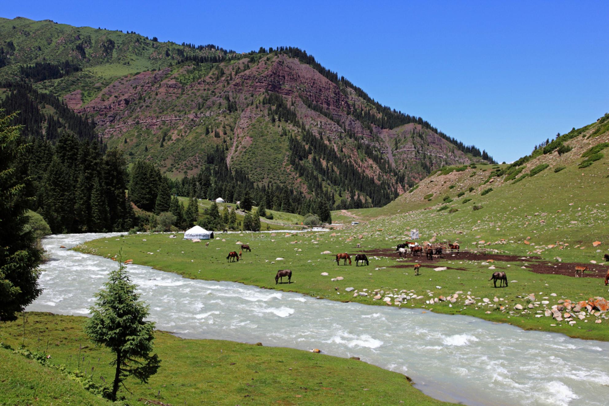 Jeti-Oguz - - - foto door nvandij op 13-09-2015 - deze foto bevat: paarden, bergen, rivier, horses, river, trekking, hiking, kirgizie, yurt, kyrgyzstan mountains, jeti-oguz - Deze foto mag gebruikt worden in een Zoom.nl publicatie