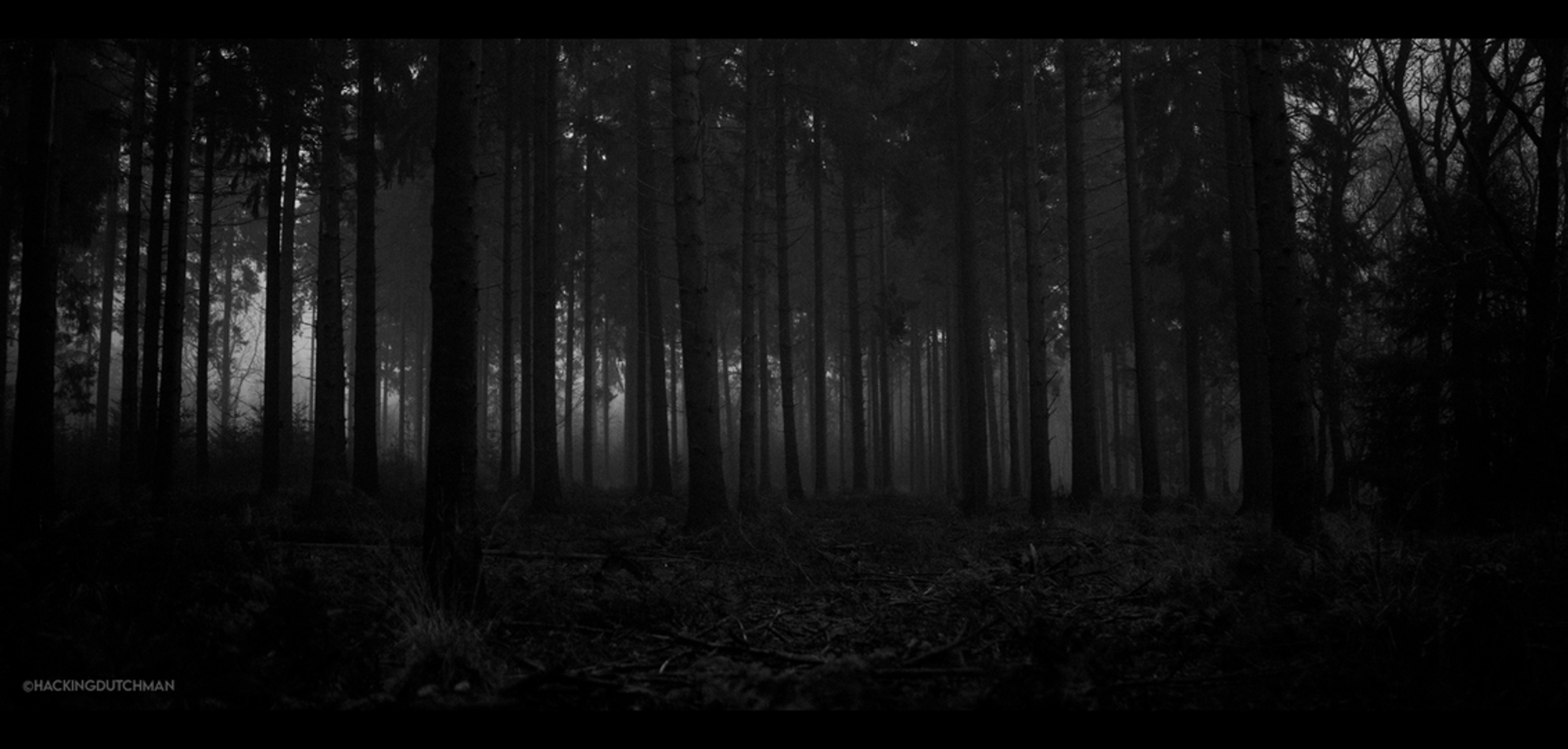 Avondval - Een experiment. Met weinig licht uit de hand nog een plaatje proberen te schieten in het bos. Hoge ISO, lage sluitertijd en heel stil blijven staan. - foto door motionman op 14-12-2020 - deze foto bevat: donker, test, natuur, licht, hoog, avond, landschap, bos, experiment, bomen, silhouet, horror, nacht, film, zwartwit, sfeer, korrel, eng, iso, hoge, weinig, sfeervol, korrelig, scene, oranjewoud, macabre, nachtval, scenisch - Deze foto mag gebruikt worden in een Zoom.nl publicatie