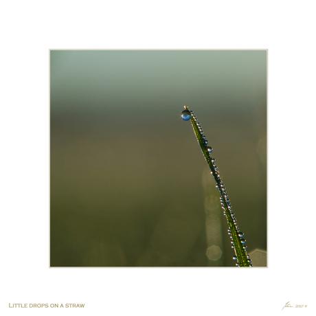 Little drops on a straw