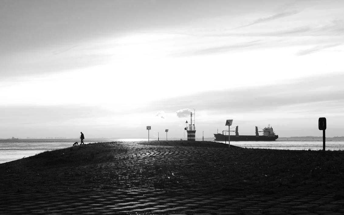 Who let the dogs out... - Hansweert - Genomen nabij de verkeerstoren van Hansweert, Zeeland. - foto door Krulkoos op 05-12-2019 - deze foto bevat: zon, zee, boot, avond, huisdier, hond, silhouette, zeeland, schip, nederland, schepen, zwartwit, wandelen, westerschelde, containerschip, verkeerstoren, uitlaten, maritiem, schelde, wandelaar, rustig, baasje, hansweert, zwartenwit, maurice weststrate, lx100