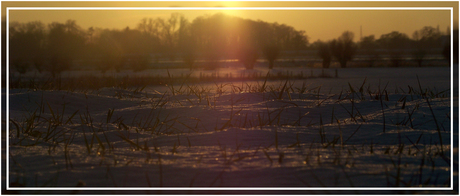 Witte winterse dagen