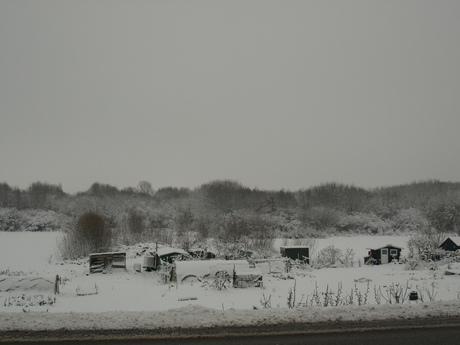 Sneeuw landschap5