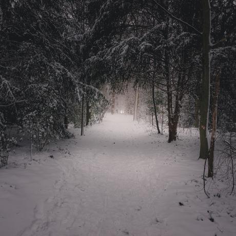 Winter landschap 18