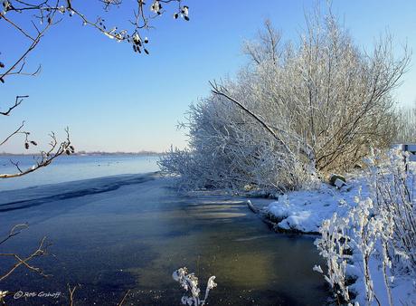 Winterse beelden
