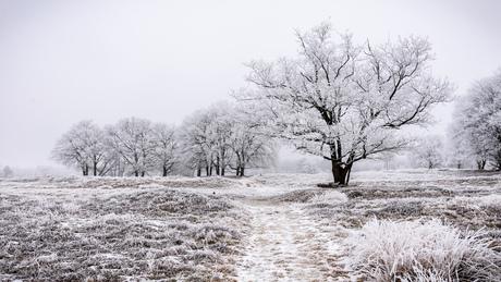 * Wintertime *