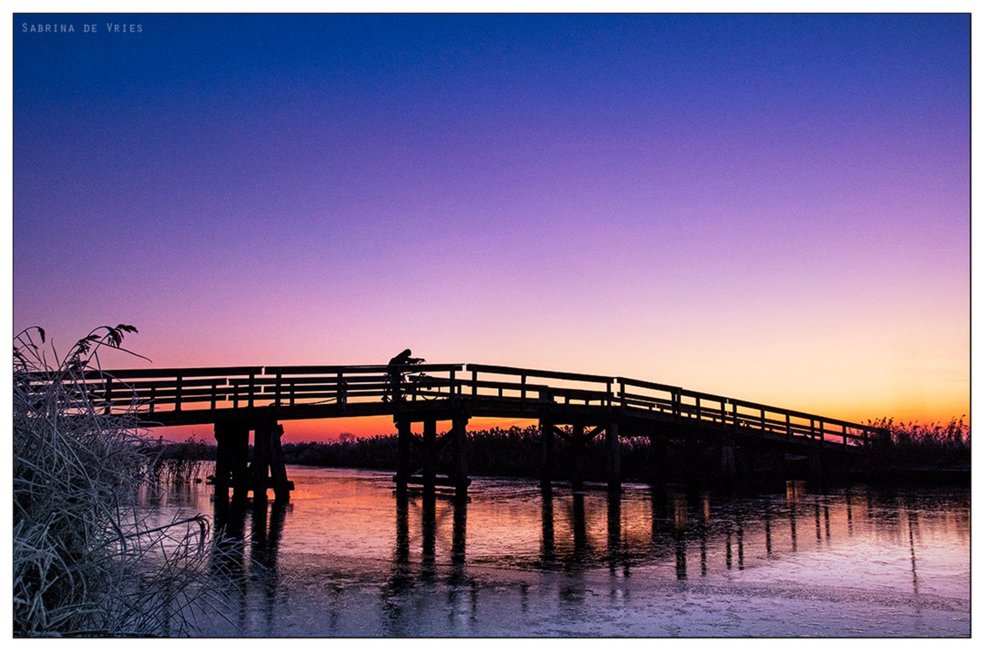 Fietsbruggetje Allingawier - 6-12-2016 Allingawier - foto door ReflectionsFromWithin op 07-12-2016 - deze foto bevat: roze, lucht, paars, kleur, water, licht, oranje, winter, fiets, ijs, landschap, mist, zonsopkomst, fietser, sloot, hout, brug, sfeer, fietsen, bevroren, warm, december, najaar, glad, winters, vriezen - Deze foto mag gebruikt worden in een Zoom.nl publicatie