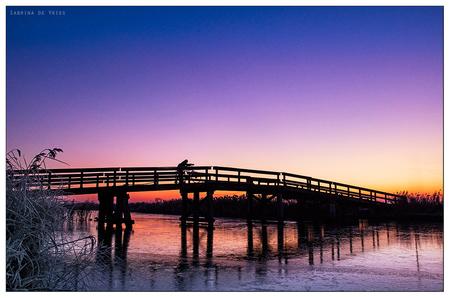 Fietsbruggetje Allingawier - 6-12-2016 Allingawier - foto door ReflectionsFromWithin op 07-12-2016 - deze foto bevat: roze, lucht, paars, kleur, water, licht, oranje, winter, fiets, ijs, landschap, mist, zonsopkomst, fietser, sloot, hout, brug, sfeer, fietsen, bevroren, warm, december, najaar, glad, winters, vriezen
