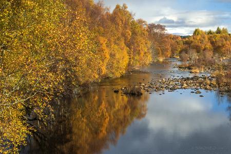 Spey - De afgelopen herfst was een explosie van kleur in Schotland. Het gouden kleurtje van de berken contrasteerde prachtig met de hemelsblauwe lucht en de - foto door simoneo_zoom op 18-01-2019 - deze foto bevat: lucht, wolken, natuur, licht, herfst, vakantie, bomen, bergen, schotland, rivier, cairngorms, fotoreis, natuurfototrips, newtonmore, spey