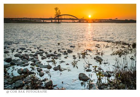 Viaanse brug bij zonsopkomst