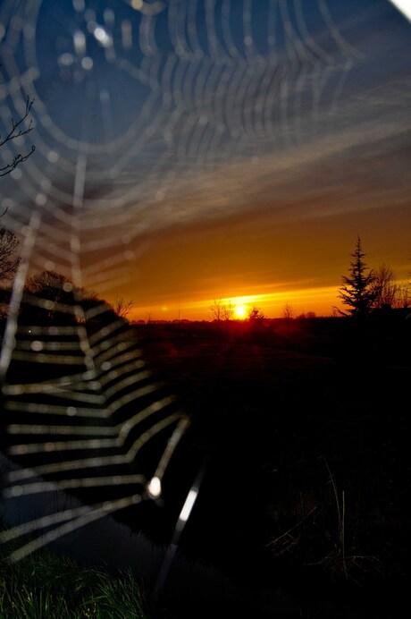 Zonsondergang met spinnenweb 15-04-2010