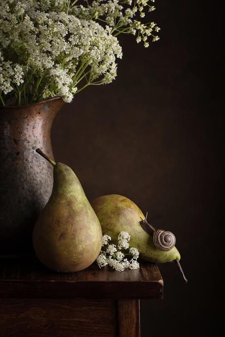 peren met slak