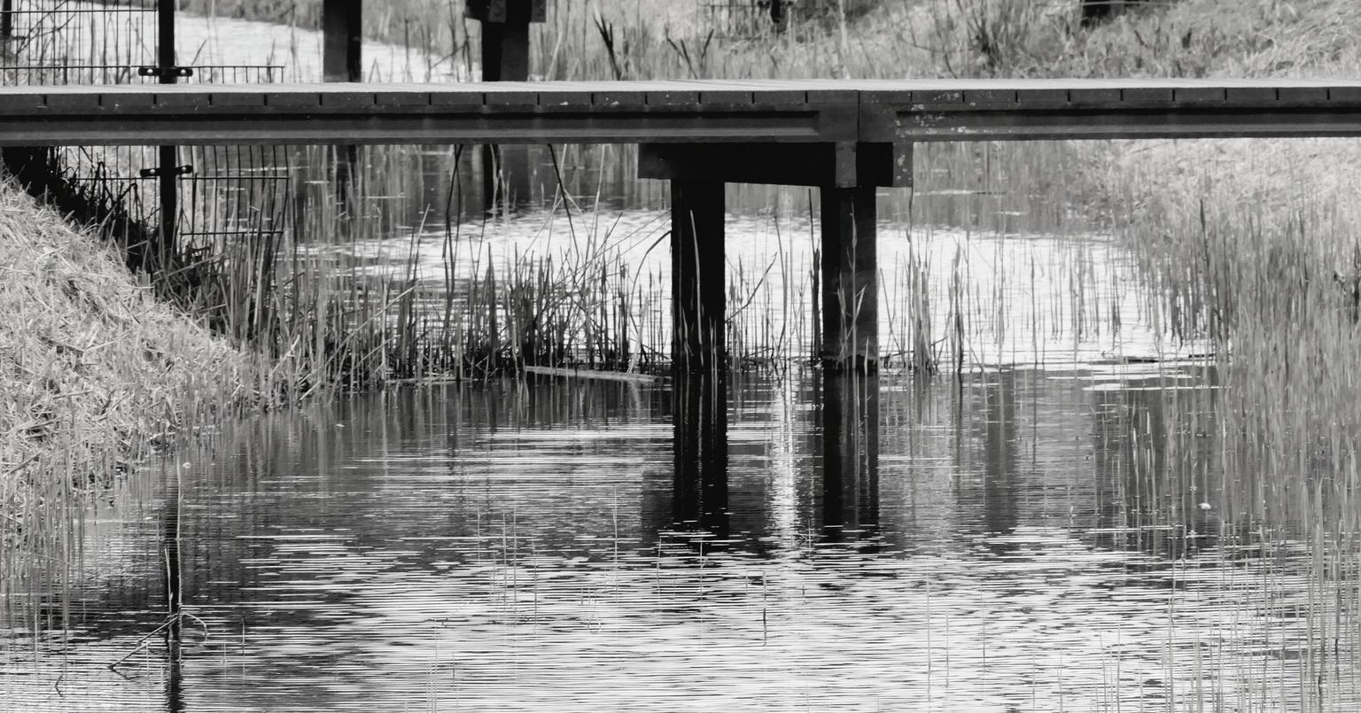 Bridge over troubled water - Je moet er wel over om verder te komen  - foto door Ingridpronk op 14-04-2021 - locatie: Oss, Nederland - deze foto bevat: water, fabriek, watervoorraden, natuurlijk landschap, zwart, afdeling, hout, meer, vegetatie, zwart en wit
