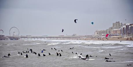 Surfen in Scheveningen