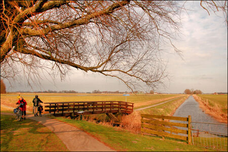 KARDINGE - Vandaag richting het natuurgebied Kardinge bij Groningen met een fietspad voa het bruggetje naar Thesinge/Garmerwolde - foto door Teunis Haveman op 25-02-2021 - deze foto bevat: water, lente, natuur, landschap, bomen, brug, kardinge