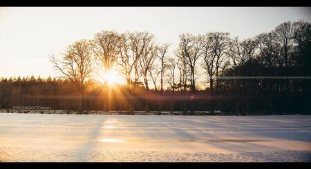 Zonsondergang - Zonsondergang. Zonder de zon daalt de temperatuur zeer snel.     ©MotionMan 2021 - foto door motionman op 16-02-2021 - deze foto bevat: kleuren, wit, zon, boom, sunset, natuur, lens, oranje, sneeuw, winter, zonsondergang, reflectie, landschap, bos, tegenlicht, bomen, goud, koud, sfeer, emotie, lensflare, kleurrijk, weiland, warm, fotografie, zonnig, gloed, sfeervol, warme, 50mm, flare, scene, oranjewoud, flares, lensflares, filmisch, perspecief, sirui, scenisch, anamorfisch