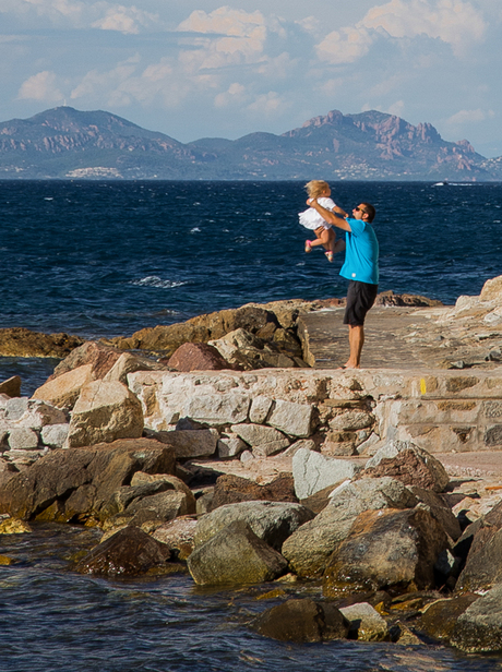 Fly or throwing