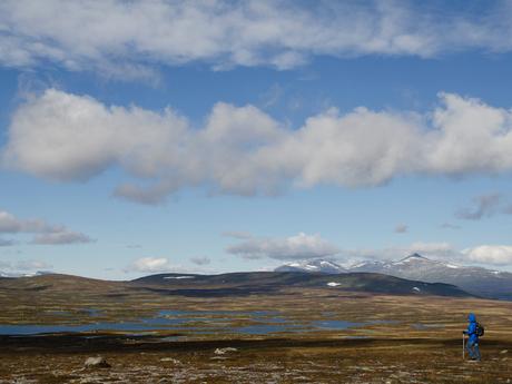 Flatruet plateau
