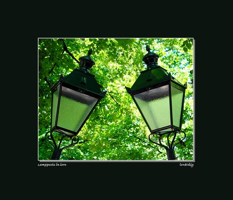 Lampposts in love