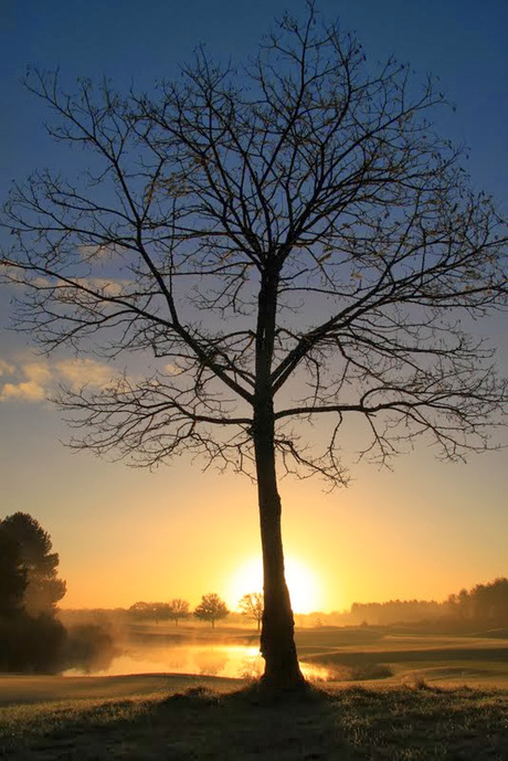 November morning