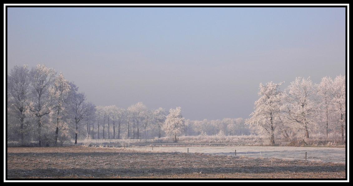 """Winters landschap - afgelopen zaterdag (22-12) zeer mooie natuur met geweldige """"ijsbomen"""" Vooral het vroege zonlicht erop was geweldig om te zien. - foto door batsboer op 24-12-2007 - deze foto bevat: boom, natuur, sneeuw, rijp, ijs, winter, bomen, koud, bevroren, essen, lamdschap, batsboer"""