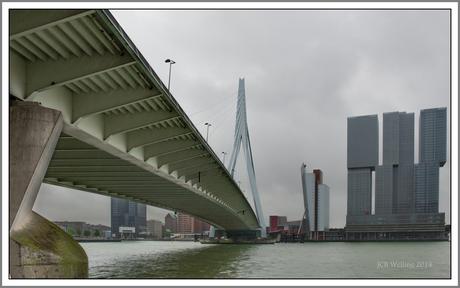 Een verregend Rotterdam